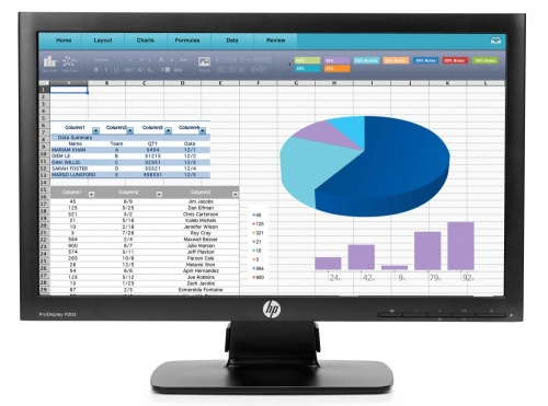 Monitor HP ProDisplay P202 LED 20'', Widescreen, Negro