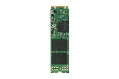 SSD Transcend MTS800, 512GB, SATA III, M.2