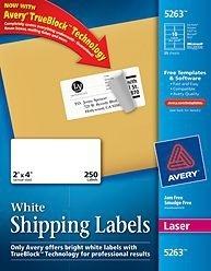 Avery Etiqueta de Envío 5263, 250 Etiquetas de 2'' x 4'', Blanco