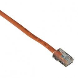Black Box Cable Patch Cat5e UTP Moldeado sin Enganche RJ-45 Macho - RJ-45 Macho, 30cm, Naranja