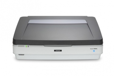 Scanner Epson Expression 12000XL, 2400 x 4800DPI, Escáner Color, USB 2.0, Gris