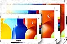 Epson Rollo de Papel Blanco Semimate para Prueba de Color 255g/m², 13'' x 100'