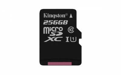 Memoria Flash Kingston Canvas Select, 256GB MicroSDXC UHS-I Clase 10