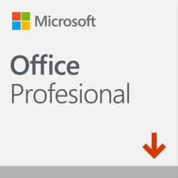 Microsoft Office Profesional 2019, 1PC, Plurilingüe, Windows