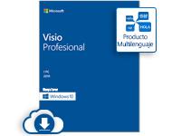 Microsoft Visio Professional 2019, 1 PC, Plurilingüe, Windows ― Producto Digital Descargable