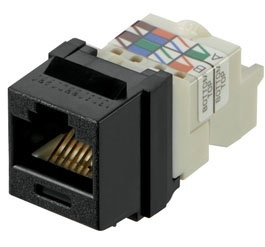 Panduit Jack de Red Cat6, RJ-45, Negro