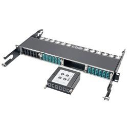 Tripp Lite Módulo de 6 Adaptadores de Fibra Óptica MTP/MPO, Negro