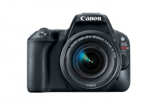 Cámara Réflex Canon EOS Rebel SL2, 24.2MP, Negro + Lente EF-S 18-55mm ― ¡Compre y reciba $1600 pesos de saldo para su siguiente pedido!