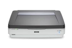 Scanner Epson Expression 12000XL, 2400 x 4800DPI, Escáner Color, USB 2.0, Gris