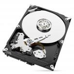 Disco Duro para Videovigilancia Seagate SkyHawk 3.5'', 1TB, SATA III, 6Gbit/s, 64MB Cache