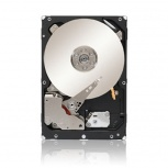 Disco Duro para Servidor Seagate Constellation 3.5