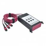 Tripp Lite Módulo Multiconector de 12 Adaptadores Fibra Óptica, x3 MTP/MPO, Negro/Rojo