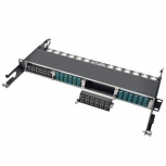 Tripp Lite Módulo de 12 Adaptadores de Fibra Óptica MTP/MPO, Negro