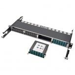 Tripp Lite Módulo de 12 Adaptadores de Fibra Óptica LC, x2 OM4 MTP/MPO, Negro