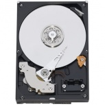 Disco Duro Interno Western Digital WD RE3 250GB 3.5'', 250GB, SATA, 7200RPM, 16MB Cache