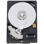 Disco Duro Interno Western Digital WD Enterprise RE3 3.5'', 500GB, SATA II, 3 Gbit/s, 7200RPM