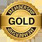Partner Gold de Hikvision