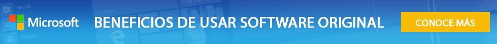 banner details software original