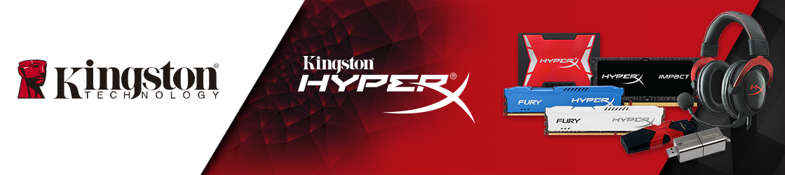 kingston cyberpuerta