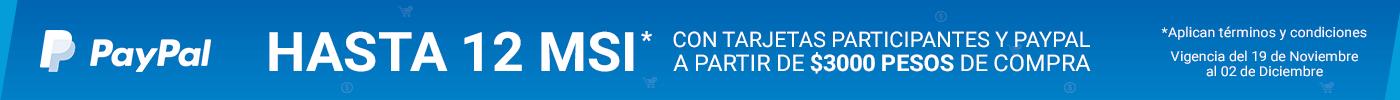 PayPal-MSI